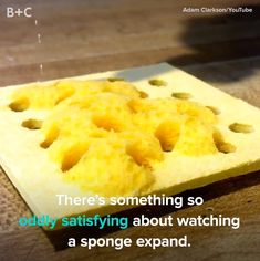 There's Something SO Satisfying About Adding Water to a Sponge - Brit + Co Videos Satisfying Pictures, Oddly Satisfying Videos, Satisfying Things, Le Slime, Def Not, Funny Vid, Videos Funny, Hilarious, Cake Decorating Videos