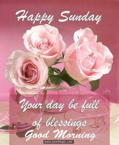 Happy Sunday, Your Day Be Full Of Blessings, Good Morning good morning sunday…