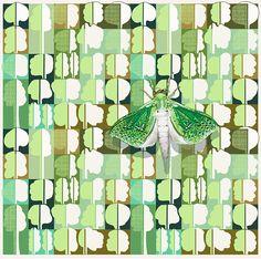 Jane Galloway, Palm Print, Puriri Moth on Bush Fabric Moth, Illustration Art, Palm Print, Artwork, Fabric, Prints, Beautiful, Living Room, Tejido