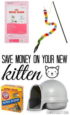 Such smart ideas! Owning a pet is expensive...so glad I found this!