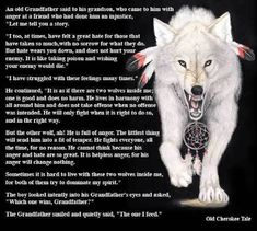 Native American Wolf Spirit Guide - The Two Wolves. Have always loved this quote! Native American Wolf, Native American Wisdom, American Animals, Animal Spirit Guides, Wolf Spirit Animal, Wolf Meaning, Of Wolf And Man, Native American Spirituality, Two Wolves