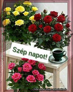 Floral Wreath, Wreaths, Pink, Home Decor, Floral Crown, Decoration Home, Door Wreaths, Room Decor, Deco Mesh Wreaths