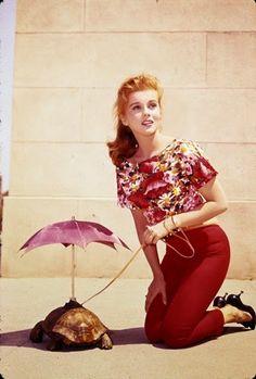 Vintage Glamour Girls: Ann Margret