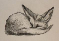 Pointsies: Fennec Fox Doodle