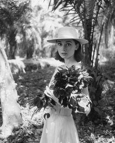 Los mejores retratos de Audrey Hepburn - Dos décadas después de su muerte, la figura de...