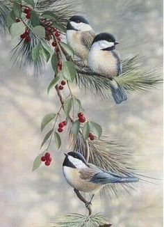 Christmas birds: this background makes it very realistic - Christmas Cards Christmas Bird, Christmas Scenes, Vintage Christmas Cards, Christmas Mantles, Silver Christmas, Victorian Christmas, Vintage Ornaments, Vintage Santas, Merry Christmas