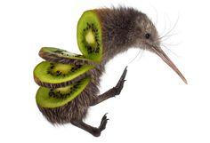 Sarah DeRemer est une artiste américaine qui excelle dans l'art de la photographie, de la peinture, du dessin et du graphisme. Dans une série intitulée Animal Food, elle représente des animaux sous la forme de fruits ou de légumes. Ainsi on peut retrouver un lion transformer en citron, une poule en orange ou encore un serpent sous la forme d'une banane.