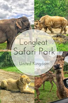 Enjoy the Adventure - Longleat Safari Park
