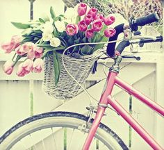 I would love to have a sweet pink bicycle.