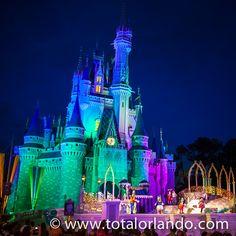 Cinderella's Castle by Night  http://www.totalorlando.com