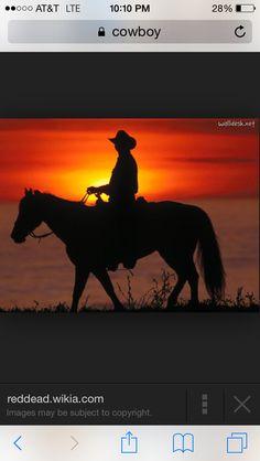 Cowboy sunset pic
