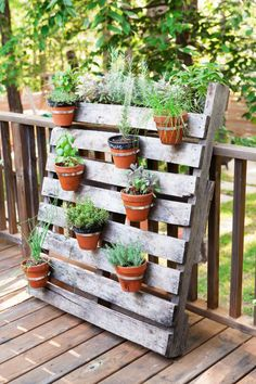 Another clever herb garden idea. Hardware store hose clamps screwed onto a freebie wood pallet, pots and herbs, and leaned it against the deck railing. Total cost (minus the dirt plants): $40. (summer porch decor potted plants)