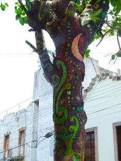 creativity in a tree..Aguascalientes, Mexico.