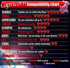Capricorn zodiac matches