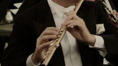 Gorgeous instrument guide videos made by the Philharmonia Orchestra