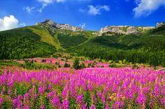 Tatranská dolina - Predné jatky
