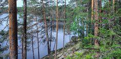 Isojärven kansallispuisto - Luontoon.fi