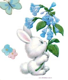 White bunny and flowers