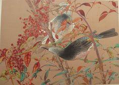 Tsuchiya Rakusan are (mostly) from a series of 100 large woodblock prints called Rakuzan Kachou Gafu, based on paintings that Rakusan made between 1925 and 1929.