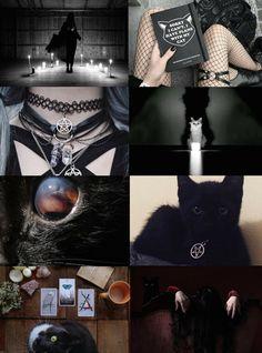 "Animal Witch Aesthetics // Cat Witch ""Requested "" Bird Witch | Snake Witch | Elephant Witch | Unicorn Witch"