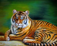 Tiger / Wildlife Original Oil Painting 18x22 by schildsart on Etsy