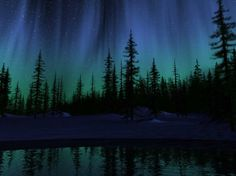 Wallpaper northern lights wallpaper768 hello there looking for northern… (#481199) - wallbase.net