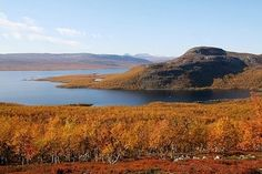 Kilpisjärvi, Finland. Hikers galore. #travel