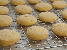 Warm out of the oven, these simple Italian cookies taste like little discs of toasted cornbread. They're tender with a pleasantly gritty texture, and not too sweet. I love them best for breakfast with a cup of coffee, but they're also perfect served alongside a scoop of ice cream or sorbet as a light and …