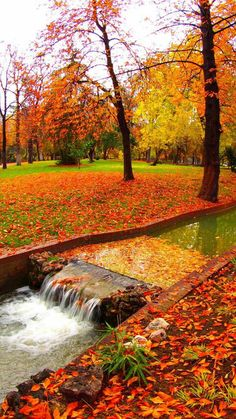 Nice picture of fall with all the fall colors. Fall Pictures, Fall Photos, Nature Pictures, Foto Nature, Autumn Scenes, Autumn Photography, Nature Wallpaper, Nature Scenes, Amazing Nature
