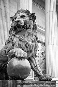 Lion Madrid by Ninetteluz,