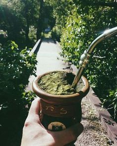 Happy almost summer, everyone! It's currently with the sensation of here in Provo! American Drinks, Yerba Mate Tea, Tea Benefits, Lower Blood Sugar, Feeling Great, Decir No, Utah, Rio Grande, Feelings