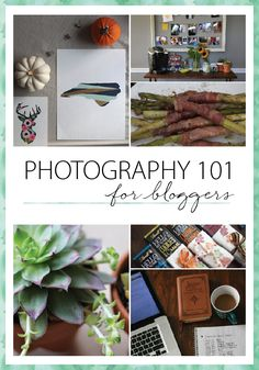 Photography 101 for bloggers. Learn what equipment is best, how to learn photography and definitions of commonly unknown terms in photography.