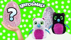 NEW #Hatchimals Magical Giant Surprise EGG hatching animals What's inside? #stressballs #waterballs #splatballs #homemmadestressballs #diystressballs #orbeezballs #kids toys #kidstoyreviews #cutting opentoys #cuttingopen #whatsinside #mashems #fashems #blindbags #toys #toysurprises #trolls #trollstoys #trollsblindbags #slime #slimeballs #fnaf #squishy #squishytoys #cutingsquishytoys