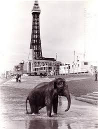 History of Blackpool Tower - explore the past with Live Blackpool Blackpool Promenade, Blackpool Beach, Old Pictures, Travel Pictures, Old Photos, Strange Pictures, Bolton England, British Seaside, British Isles