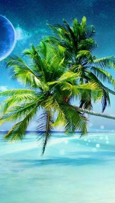 Palm tree ;)