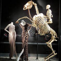 BERGDORF GOODMAN,New York Cavalos inspiram força, beleza, refinamento e elegância. Vitrines inspiradas em cavalos selecionadas pela Vitrine Mania. Confira. www.vitrinemania.com.br #vitrine #vitrinismo #visualmerchandising #ideiavitrine