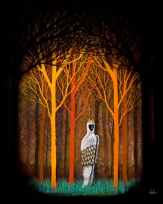 """""""Forest of Illumination"""" by Andy Kehoe"""