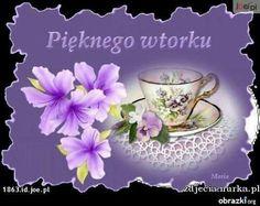 Tea Cups, Mugs, Tableware, Humor, Polish, Tuesday, Good Morning, Dinnerware, Tumblers