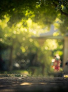 natural background for photoshop with bokeh effects