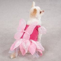 Zack & Zoey Fairy Tails Dog Costume - Pink by Pet Edge  --- BuyDogSweaters.com