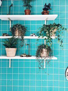 No automatic alt text available. Planter Pots, Interior, Home Decor, Decoration Home, Indoor, Room Decor, Interiors, Home Interior Design, Home Decoration