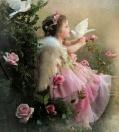 Kiss of the dove Angel Images, Angel Pictures, Art Pictures, I Believe In Angels, Angels Among Us, Beautiful Fairies, Angel Art, Belle Photo, Beautiful Images