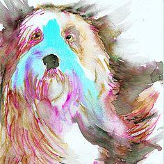 Old English Sheepdog art print,Sheep dog,Watercolor,Old English sheepdog owner…