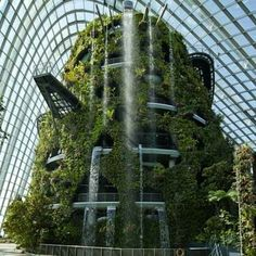"""""""Gardens by the Bay"""""""