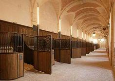 La GrandeEcurie du Château de Versailles