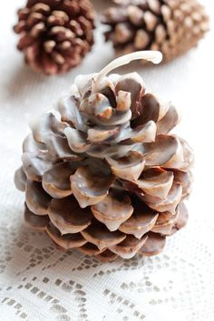 :|: SUCCESS! :|:  Pinecone Fire Starters 1lb of beeswax coats about 18 smallish pinecones. Dip multiple times for the white appearance. #firestarters