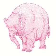 """Pink Elephant"" Art Print by Andrew Henry on Society6."