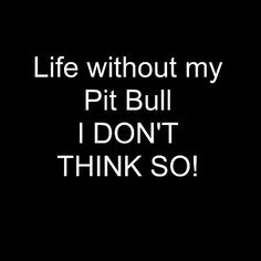 Life without my pit bull??