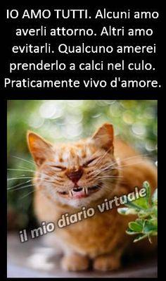 https://www.facebook.com/Il-mio-diario-virtuale-Vi - Raccolte - Google+