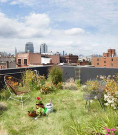 Rooftop Garden / Brooklyn, NYC I love this and have seen how resourceful New Yorkers can be. Space is a delicate commodity, so they are genius in creating a little heaven on earth, even they there is no earth.